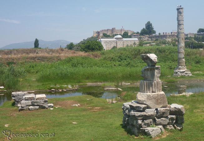 Ao fundo, aves fizeram um ninho na única pilastra que restou do Templo de Ártemis