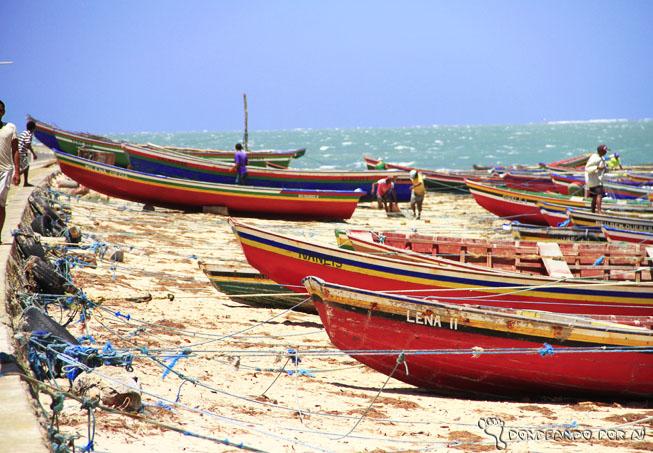 Barcos camocim pesca