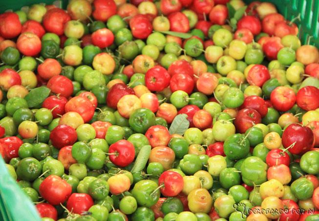 Pitangas na cesta de colheita