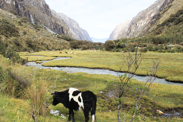 Valle Huaraz