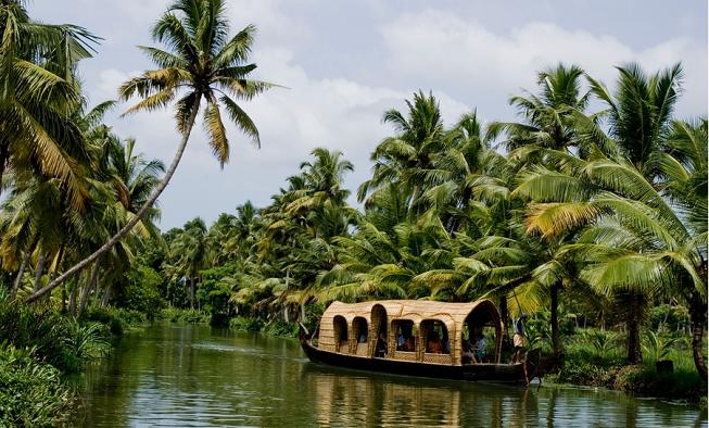 Um dos cenários bem verdes e comuns de Kerala, Índia. Crédito da Foto: departamento de mídia da Kerala Tourism.