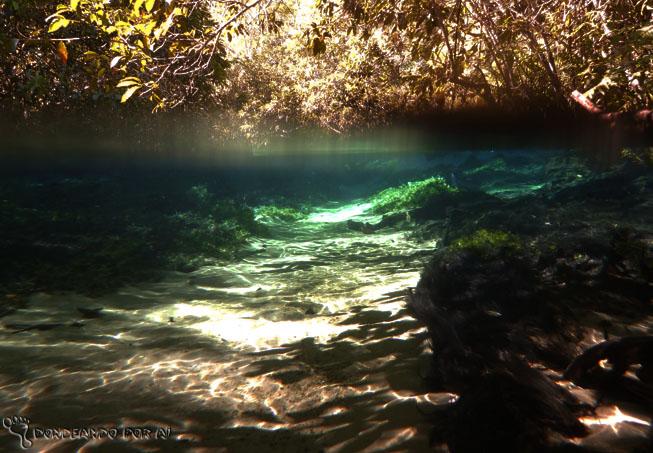 Rio da Prata flutuação