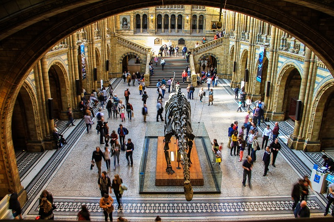 Natural_History_Museum2