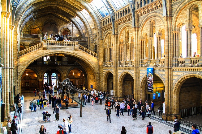 Natural_History_Museum4